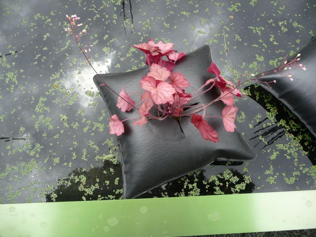 Heuchère dans un Green Pillow, création Alexis Tricoire / Agence Art Terre, Jardins Jardin 2011, Jardin des Tuileries, Paris 1er (75)