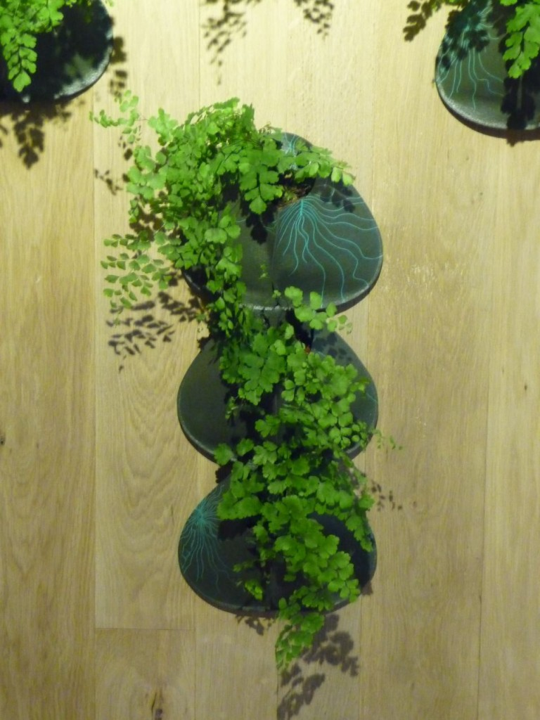"""COZO, cosse ecodesign pour plantes, """"Re"""" by Art Terre, Gambs Seconde Nature, Paris 11e (75)"""