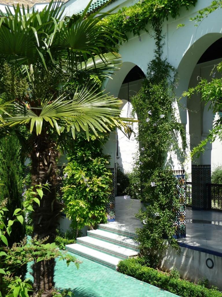 Palmier et Solanum dans la cour d'honneur et le jardin à l'Andalouse de la Grande Mosquée, Paris 5e (75)