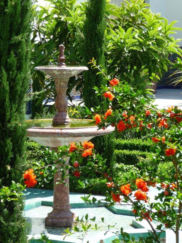 Grenadier et fontaine dans la cour d'honneur et le jardin à l'Andalouse de la Grande Mosquée, Paris 5e (75)