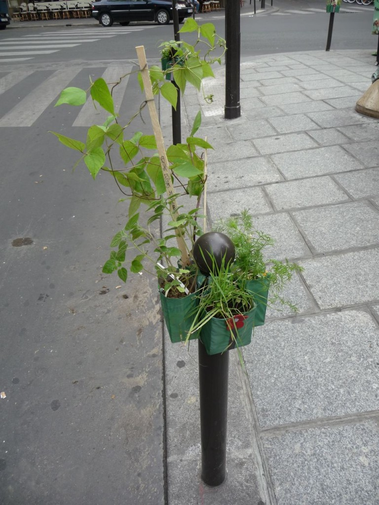 Potogreen dans la rue de Choiseul, Paris 2e (75)