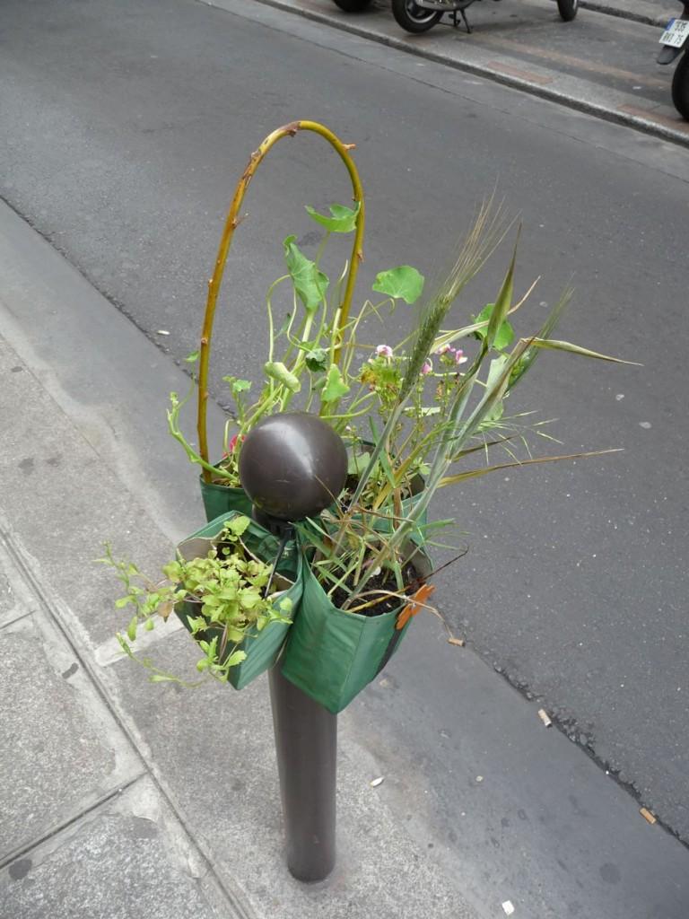 Potogreen, rue Saint-Anne, Paris 2e (75)