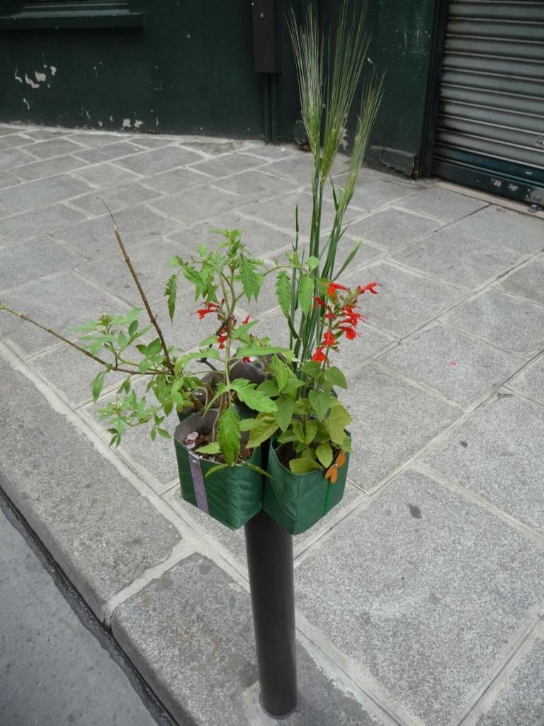 Potogreen dans la rue du Croissant, Paris 2e (75)