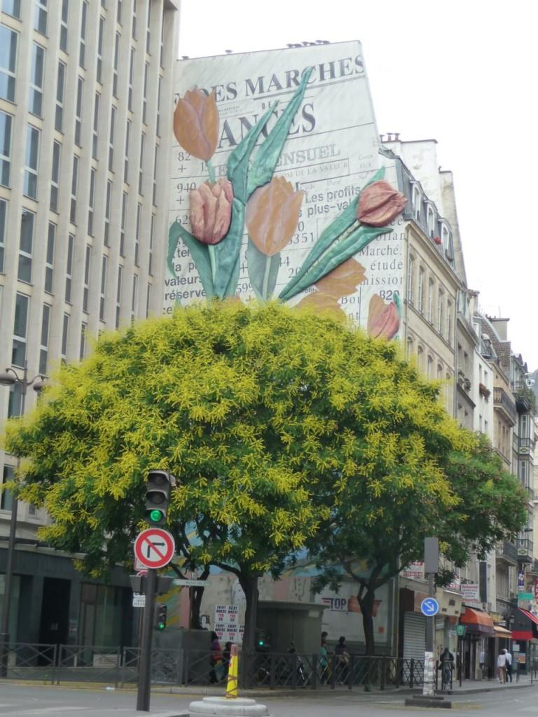 Savonnier (Koelreuteria paniculata) et fresque murale représentant des tulipes dans la rue Montmartre, Paris 2e