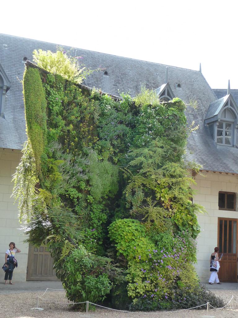 """""""Spirale végétale"""", création de Patrick Blanc, dans la cour des écuries du château de Chaumont-sur-Loire (41)"""