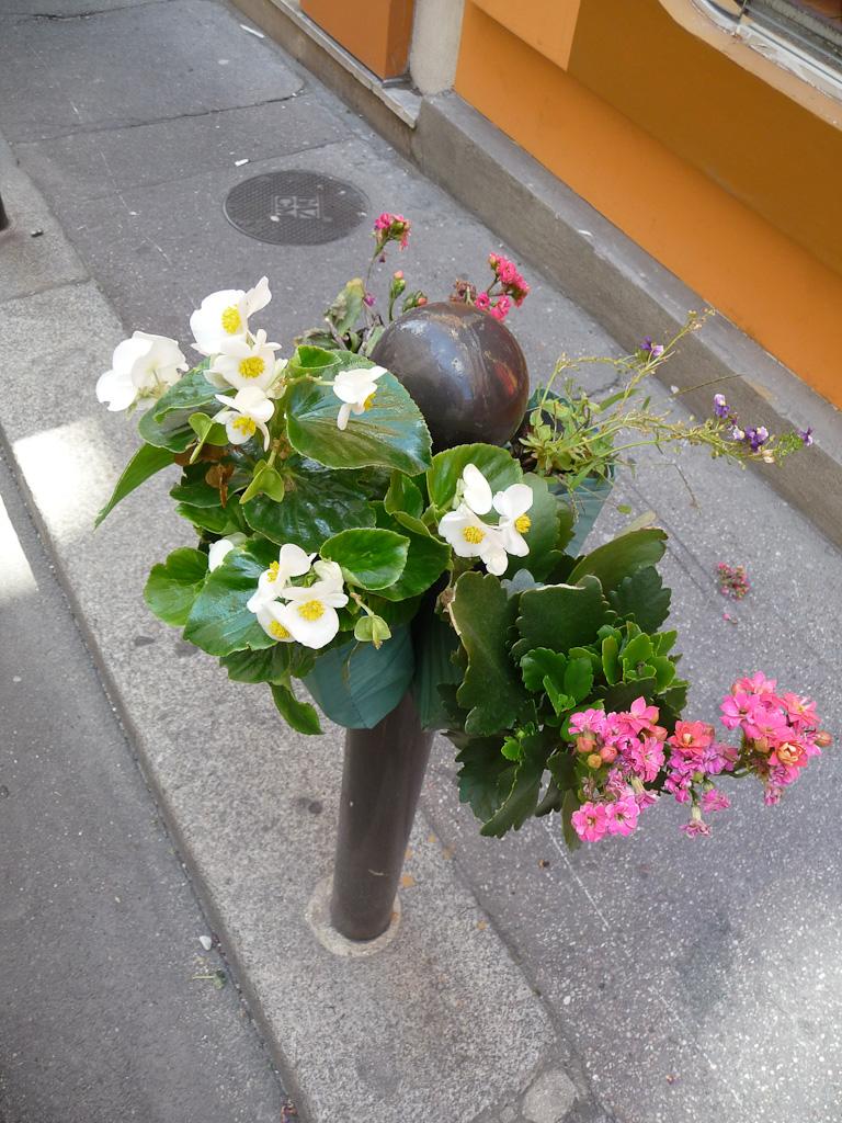 Potogreen dans la rue de Hanovre en été, Paris 2e (75), Paris Label