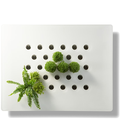 Ecran végétal DIVa, création Vertilignes