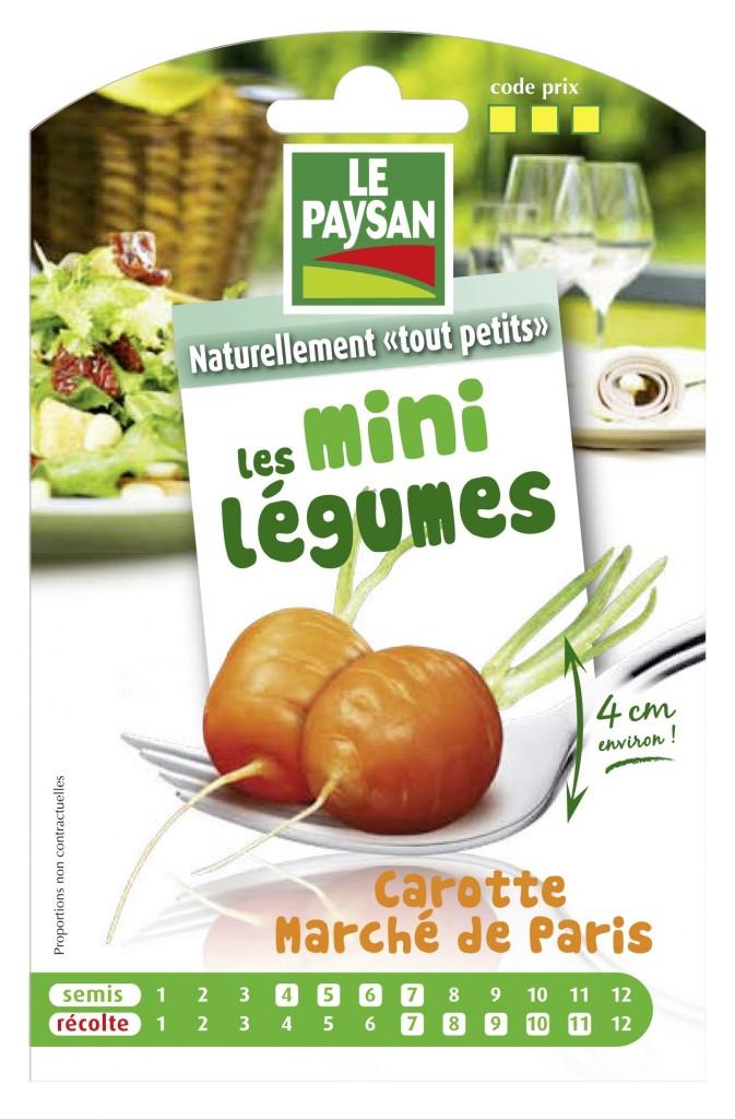 Sachet de graines de carotte 'Marché de Paris', Le Paysan