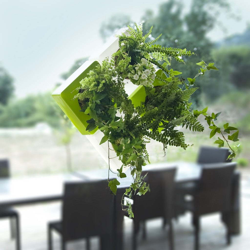 Tableau végétal, création Vertical Green