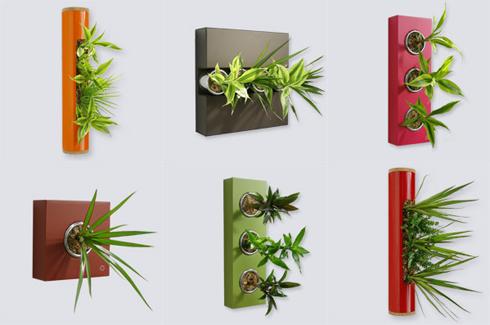 Tableaux végétaux, créations Flowerbox