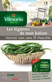 Sachet de graines de haricots 'Mascotte', Vilmorin