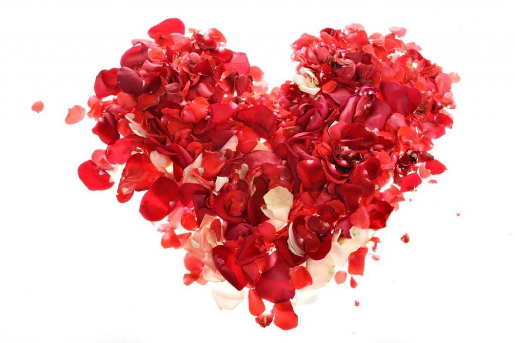 Coeur de pétales de roses
