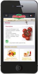 Site mobile Prince de Bretagne