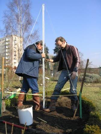 Plantation d'un arbre (SRHM)