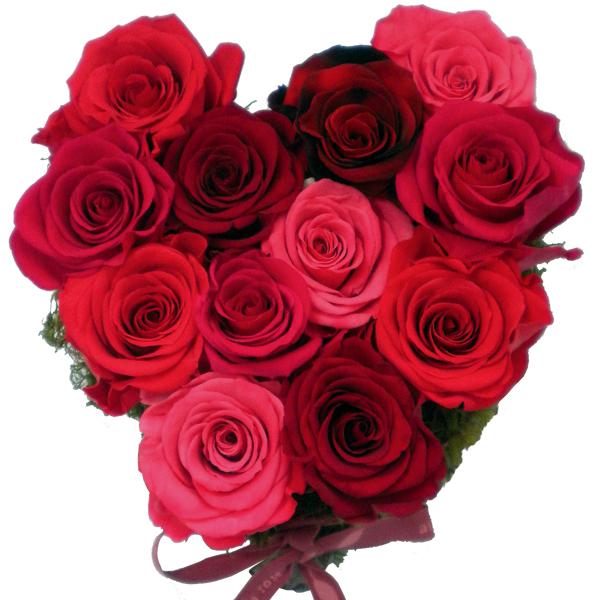 Fleurs fraîches naturalisées : roses stabilisées